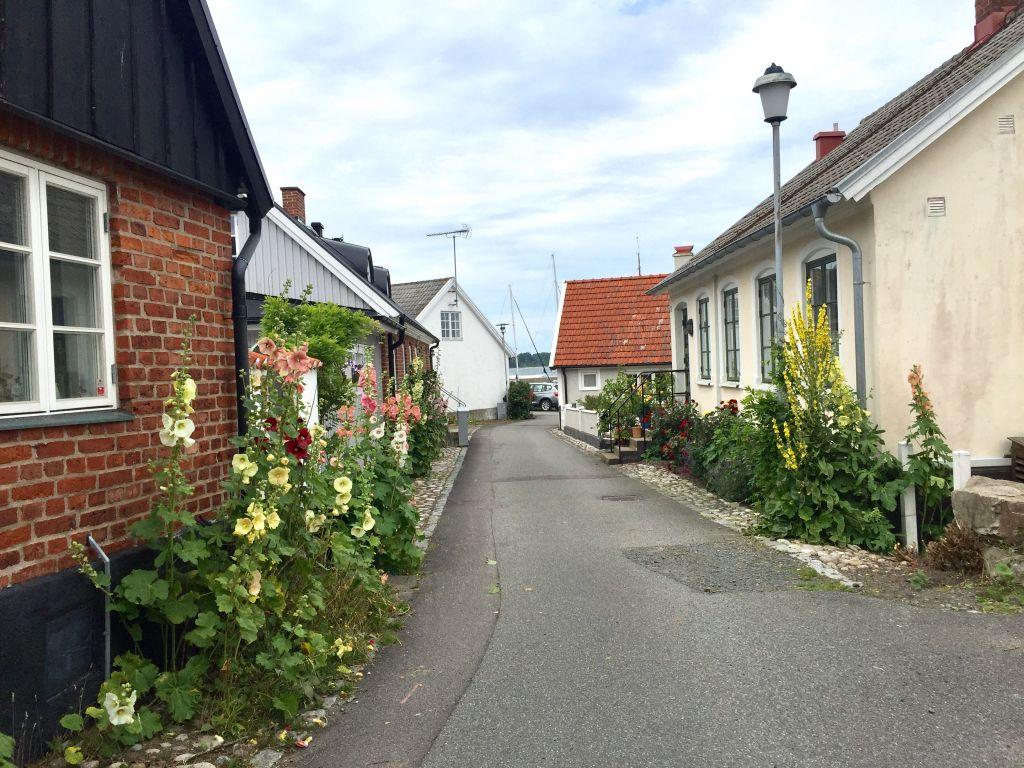 Swedish travels #whydontyou