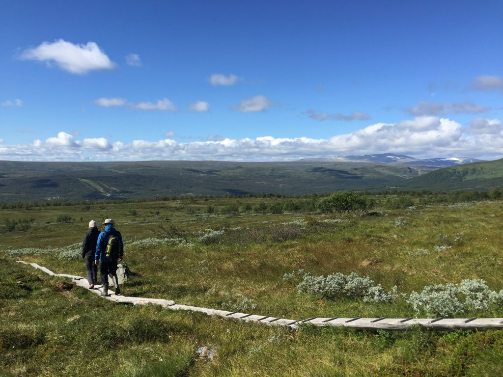 summer travels in sweden Tänndalen #whydontyou