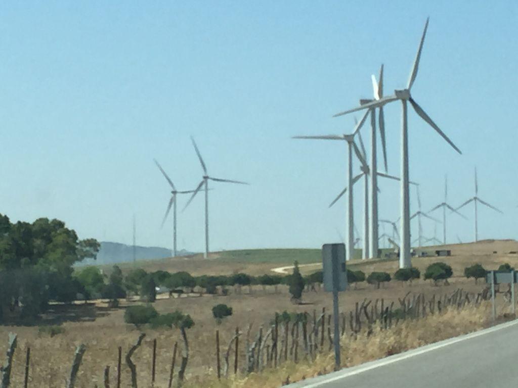 wind mills #whydontyou